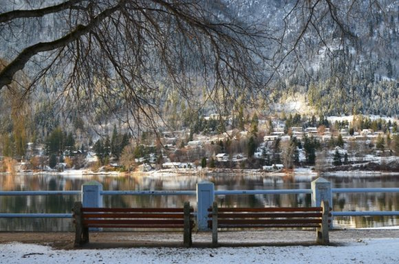 lakeside bench winter
